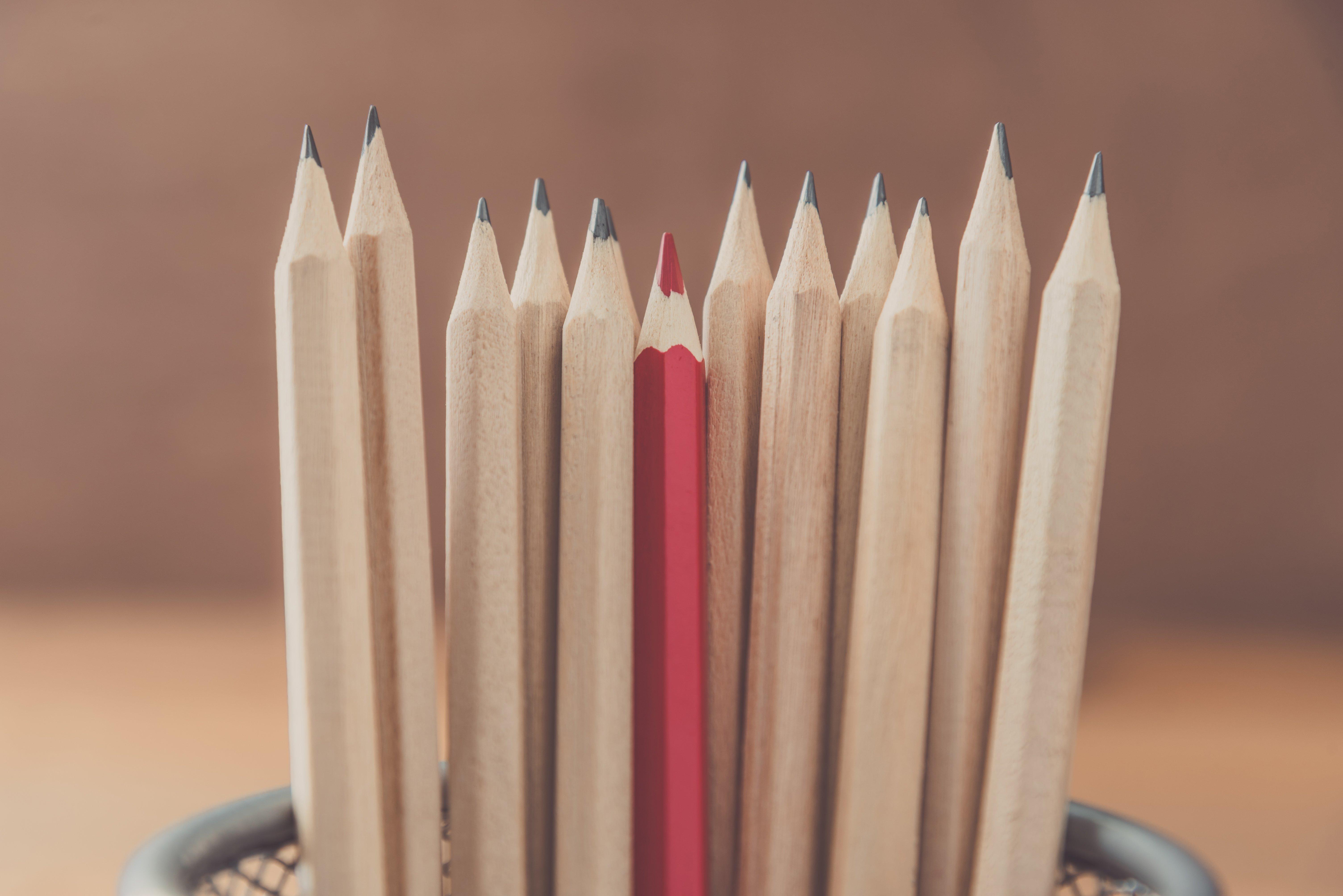 Toesti suurendada liige pliiatsi Millised on liikmete suurused