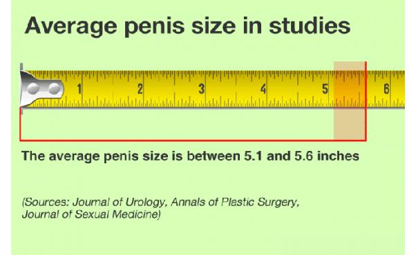 Kuidas mojutab KEGEL-i liikme suurus