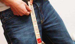 Kui palju saate oma liikme suurendada Mitu sentimeetri liikme suurust